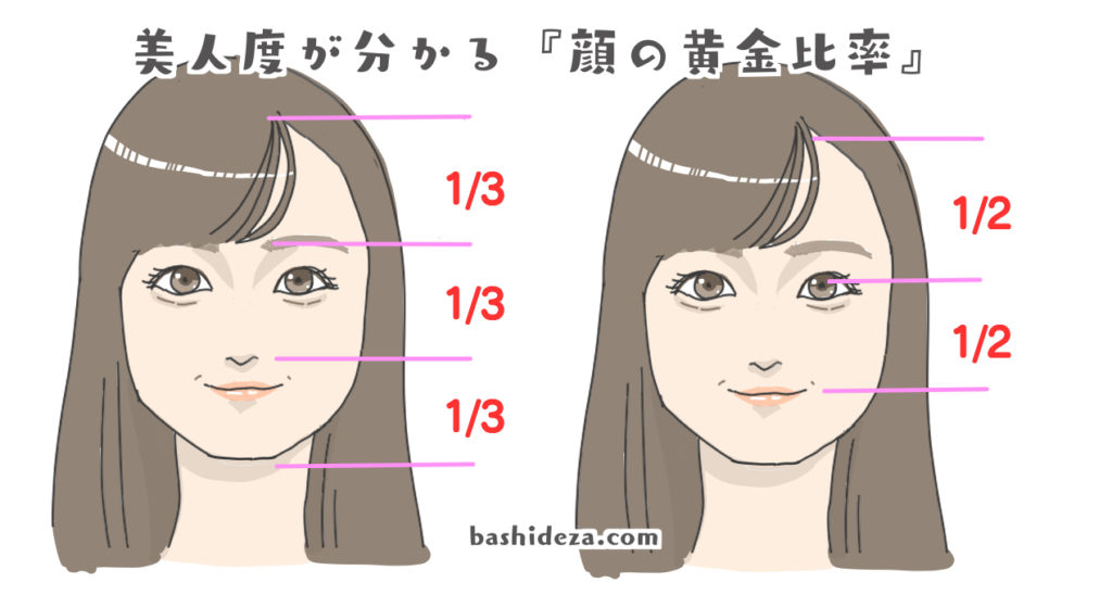 顔の黄金比率
